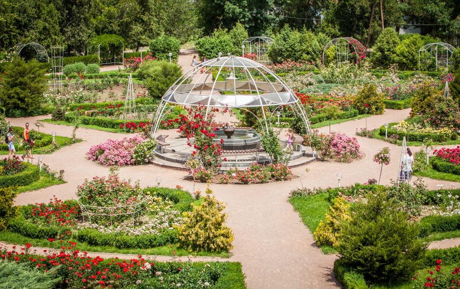 Ботанический сад КФУ